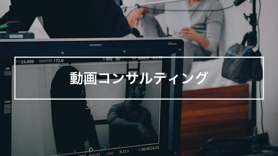 動画コンサルティング